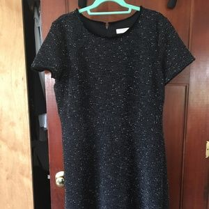 LOFT PLUS TWEED FLARE DRESS Size 16